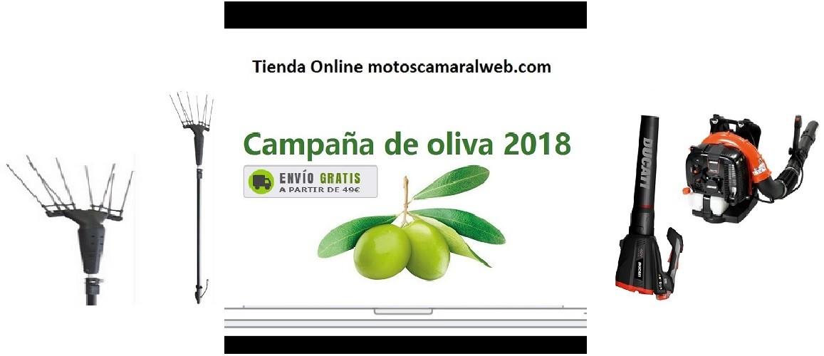 Campaña de oliva